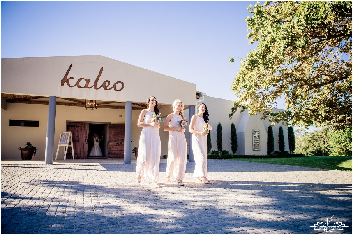 Kaleo-Wedding-Photos-Nelis-Engelbrecht-Photography-0114