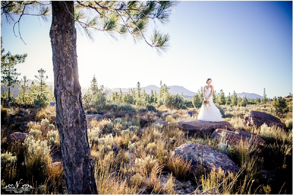 Kaleo-Wedding-Photos-Nelis-Engelbrecht-Photography-0162