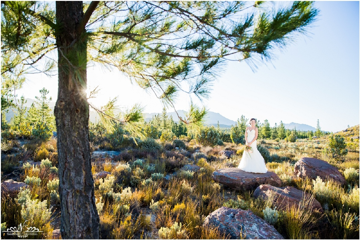 Kaleo-Wedding-Photos-Nelis-Engelbrecht-Photography-0163