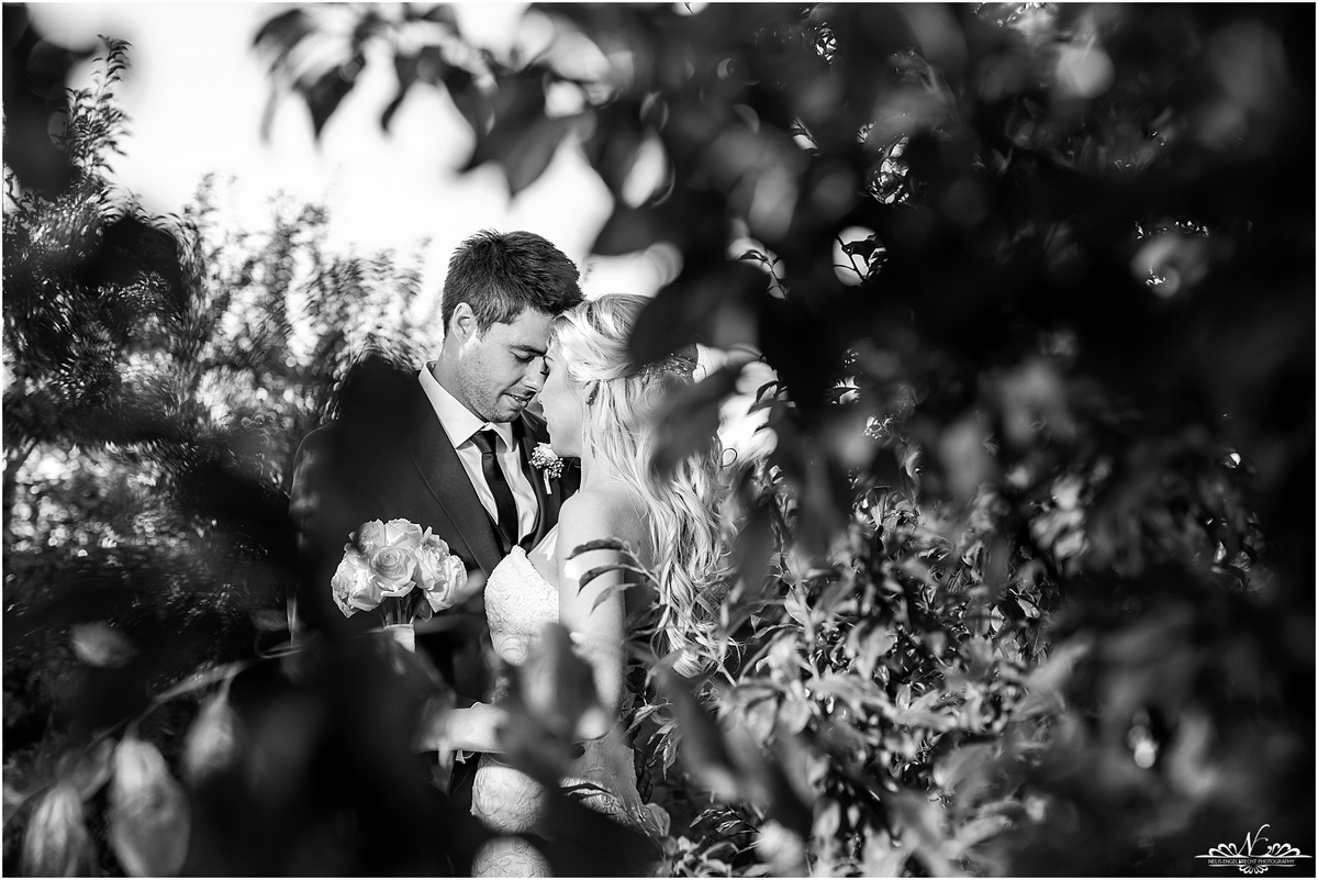 Nelis_Engelbrecht_Photography-118